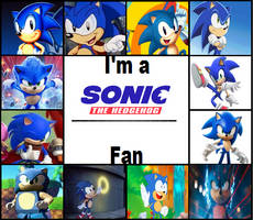 I am a Sonic The Hedgehog Fan