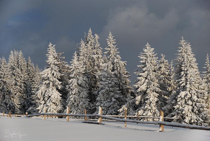 Winter kingdom by BogdanEpure