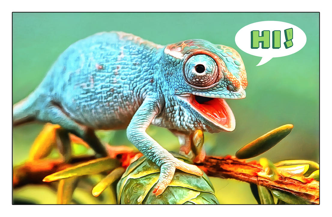 chameleon by arnarn-stinkfist
