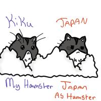 Hamhams by silverdragonchild