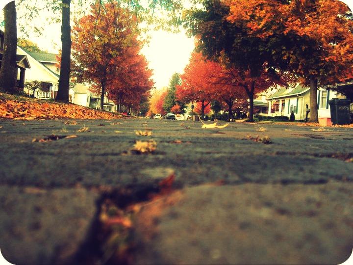 street.edited by sarachon