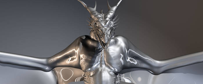 Silver Wyvern - front