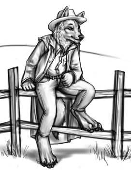Coyote Cowpoke