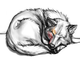 Nap Time by Anacita
