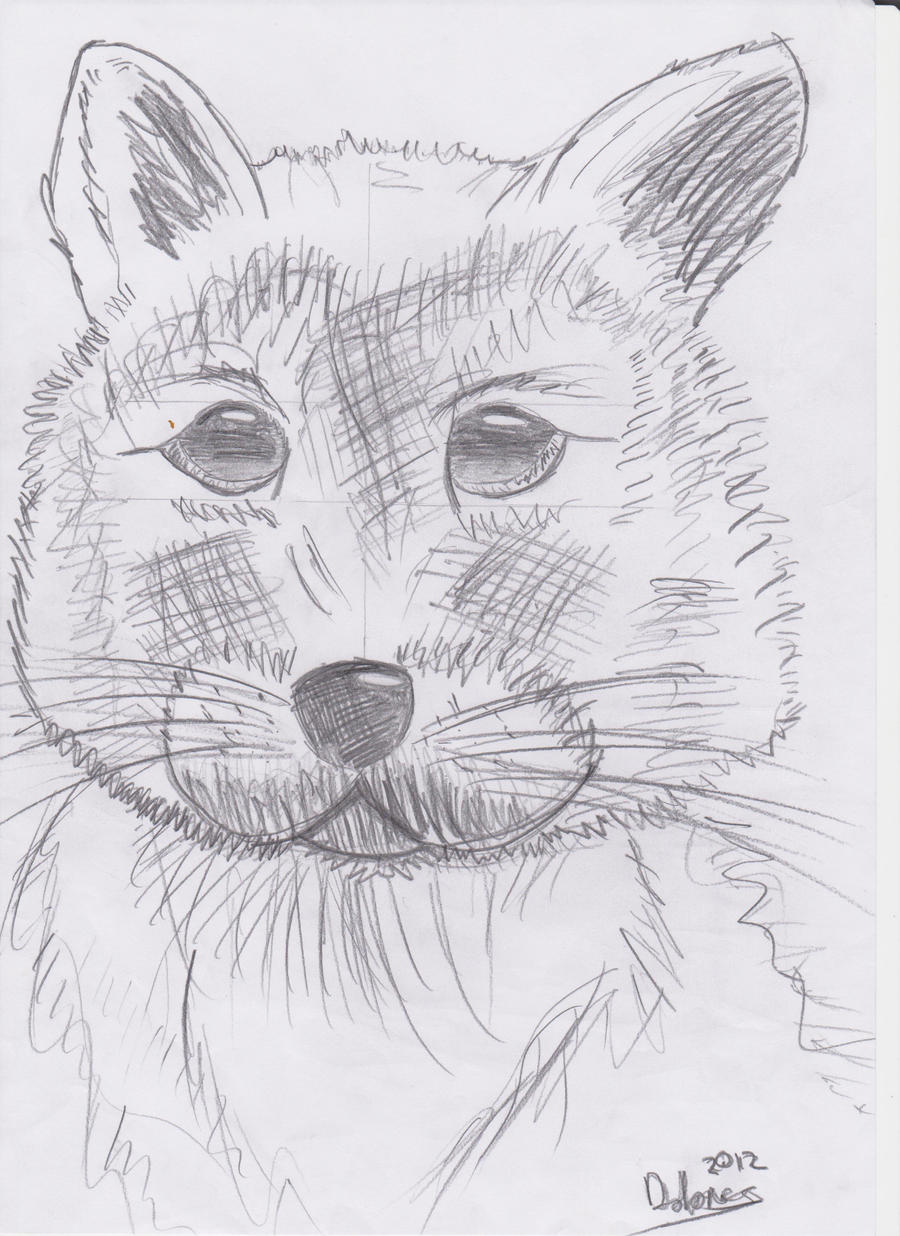 Baby Wolf Cub by firenight617 on deviantART