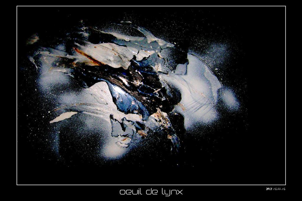 Oeuil de lynx by nobock