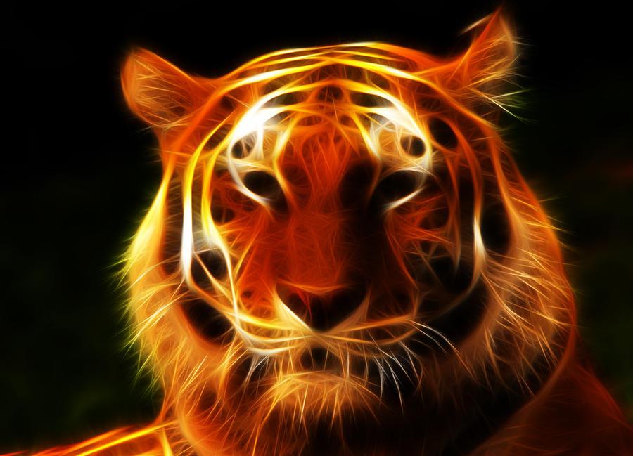 tiger fractal cats e - photo #39