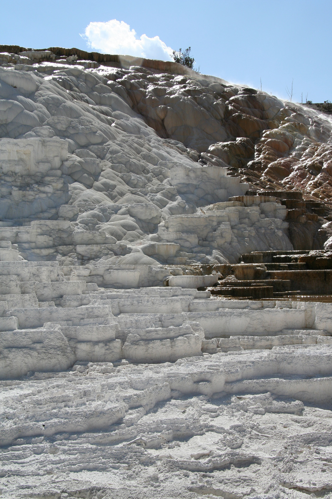 yellowstone national park adult sex dating Yellowstone national park's best 100% free gay dating site want to meet single gay men in yellowstone national park, wyoming mingle2's gay yellowstone national park personals are the free and easy way to find other yellowstone national park gay singles looking for dates, boyfriends, sex, or friends.
