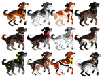 pup adoptables  {closed}