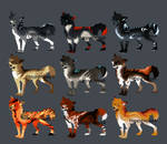 canine AUCTION {closed}