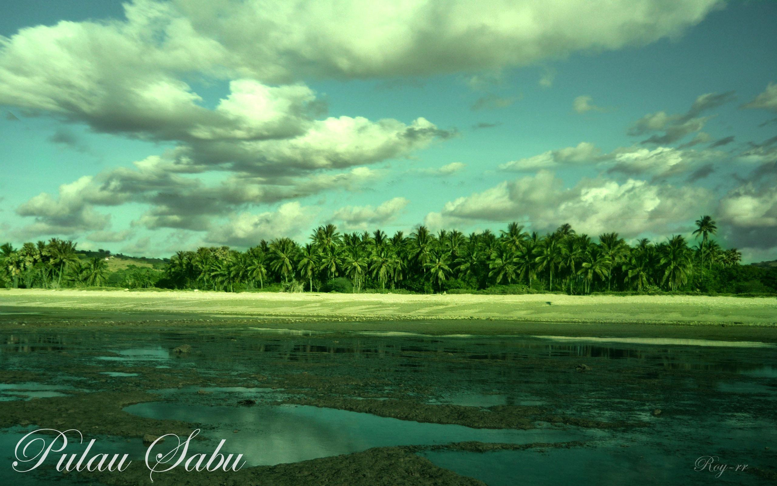 Kabupaten Sabu Raijua, Nusa Tenggara Timur(NTT, Pantai ledeana