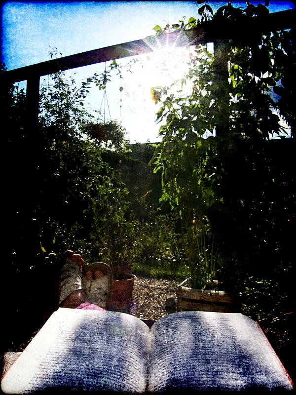 Summer by Halligen