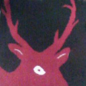 kirawinter's Profile Picture