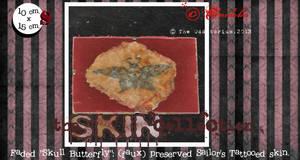 Excised Tattooed Skin 02 by crudelia