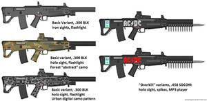 PDW-TR 300 (various camos and variants)