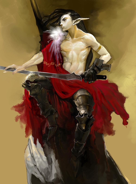 male elf swords man