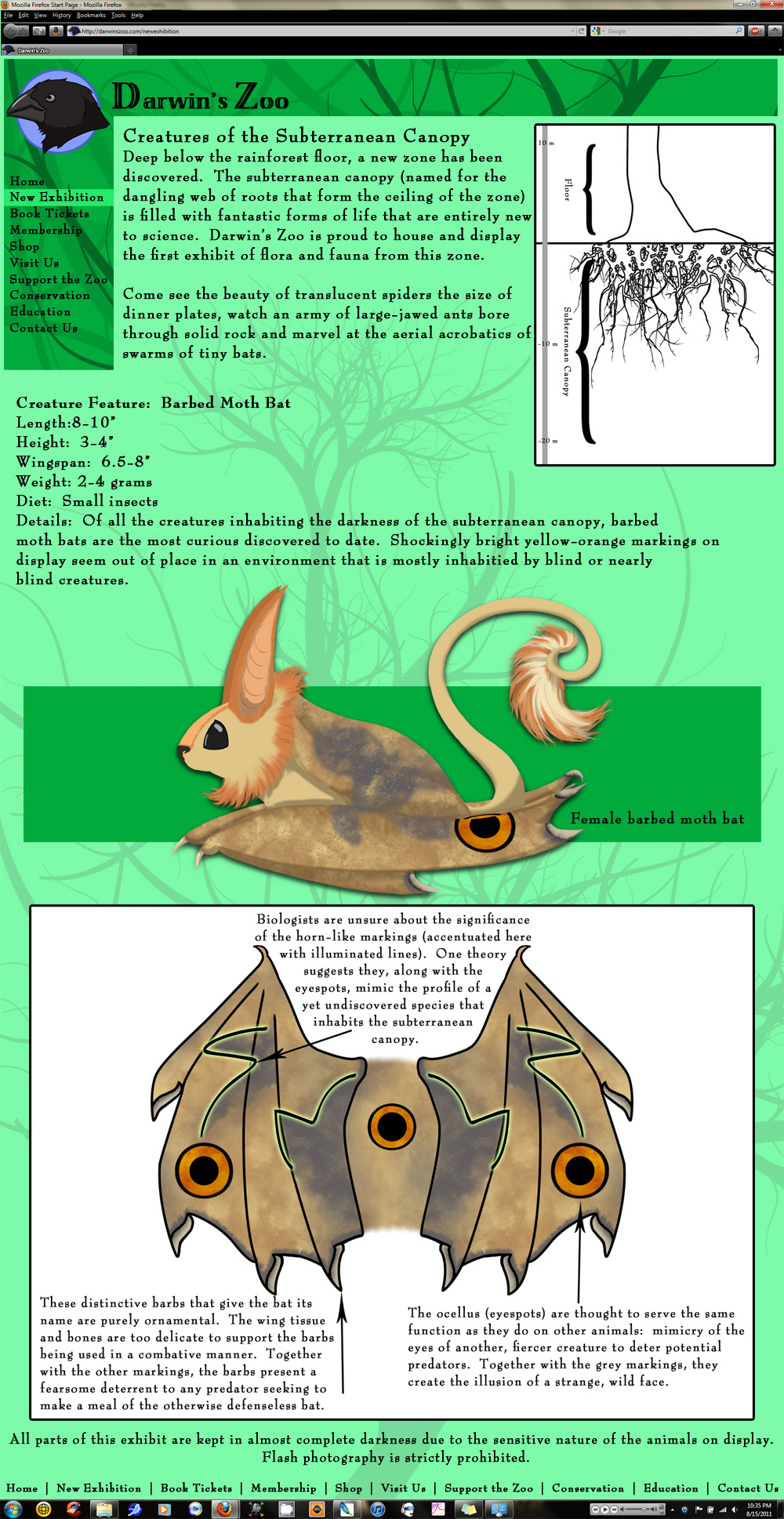 Barbed Moth Bat