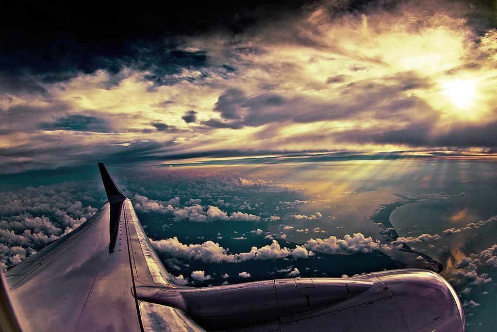 Fly by Riddlez46