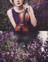 And there was music amongst the flowers. by ellylucas