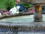 Water - Duck Bath