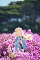 Miyazono Kaori by Shazzsteel