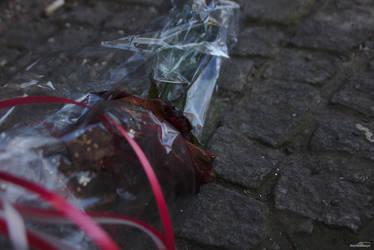 Valentine sadness by DianaShadoweye