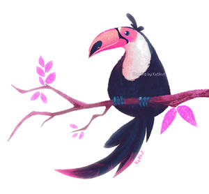 Toucan - Lunchtime sketch