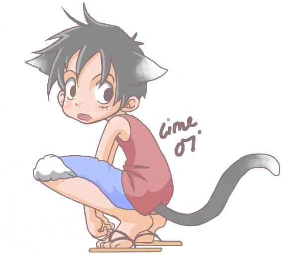 Luffy Kitten by thegreatlimechan on DeviantArt