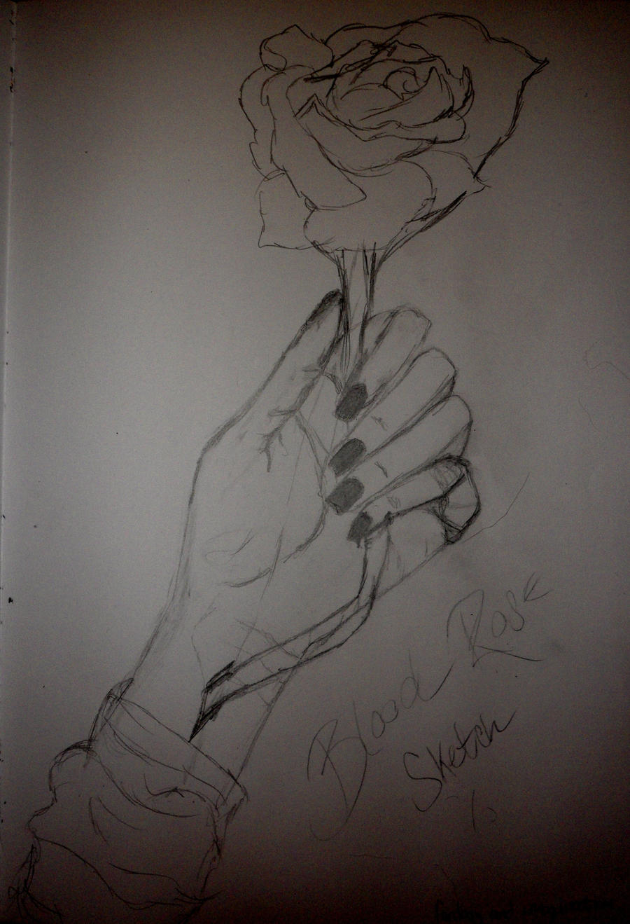 Blood rose sketch by niciki on deviantart for Hand holding a rose drawing