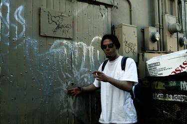 his graffiti by anna-rosenfeld
