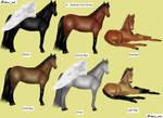 Howrse - V1 - Russian Don Horse