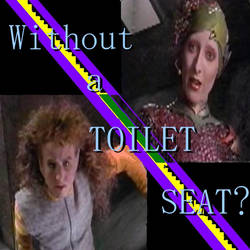 Without a Toilet Seat
