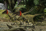 Buitreraptor:Candeleros Formation S. America 94 Ma