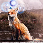Fox Stable Avatar