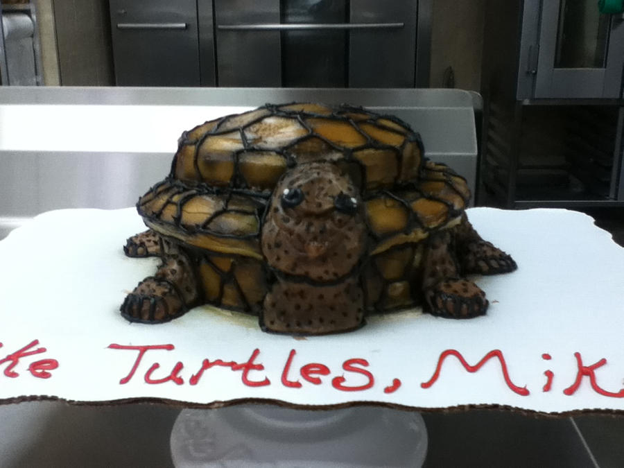 turtle cake by misstakenX