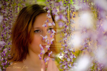 Fairy in flowers by Sharkaat