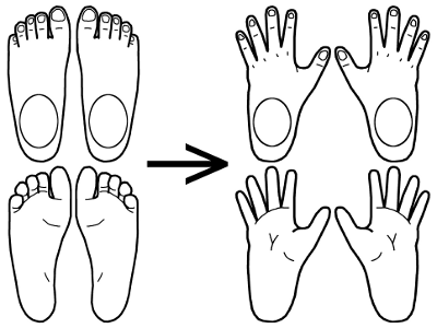 footcompare2_by_riik_art-danyf2l.png