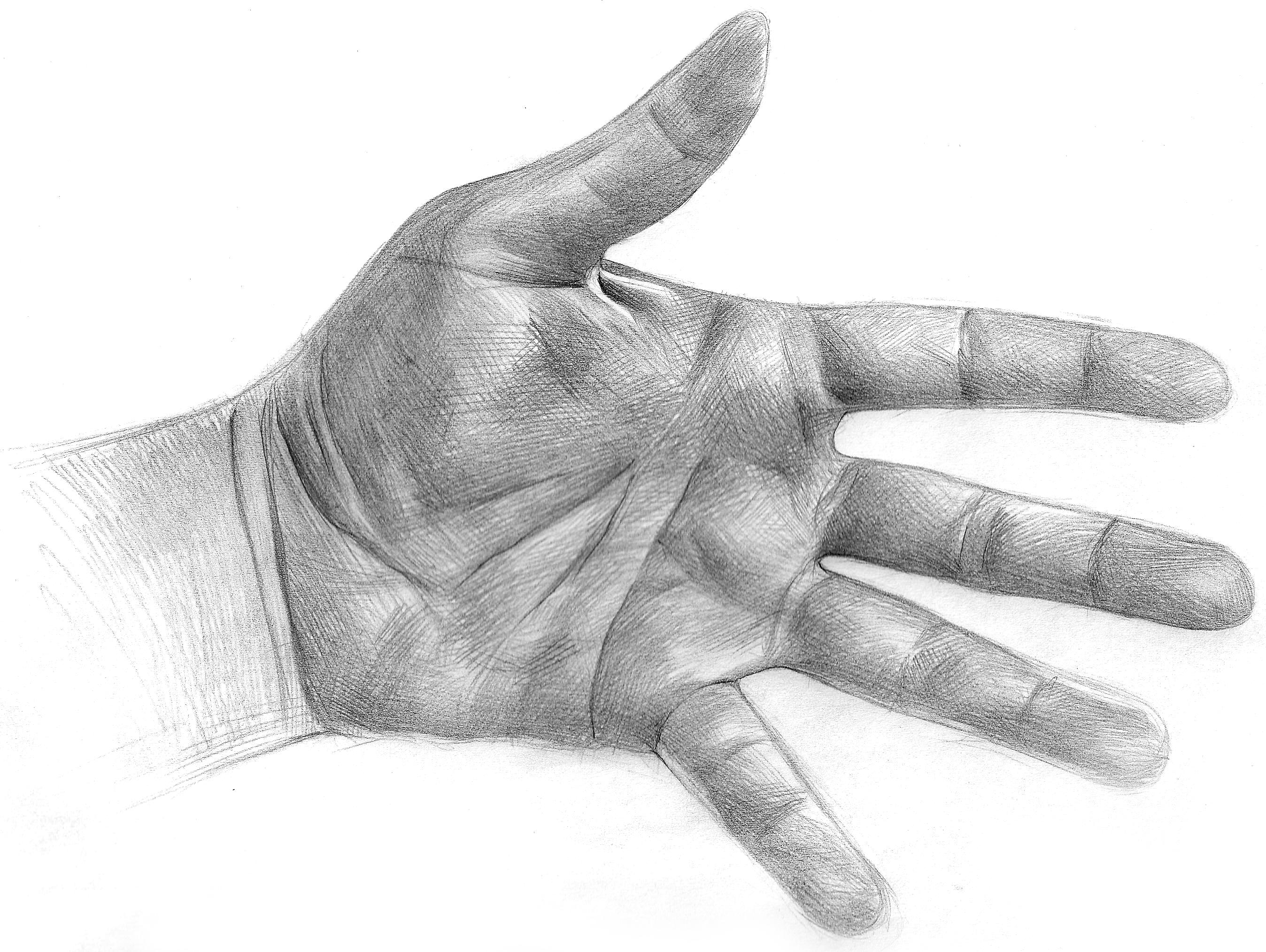 Hand Sketch on Sketch Art Of Sanchez
