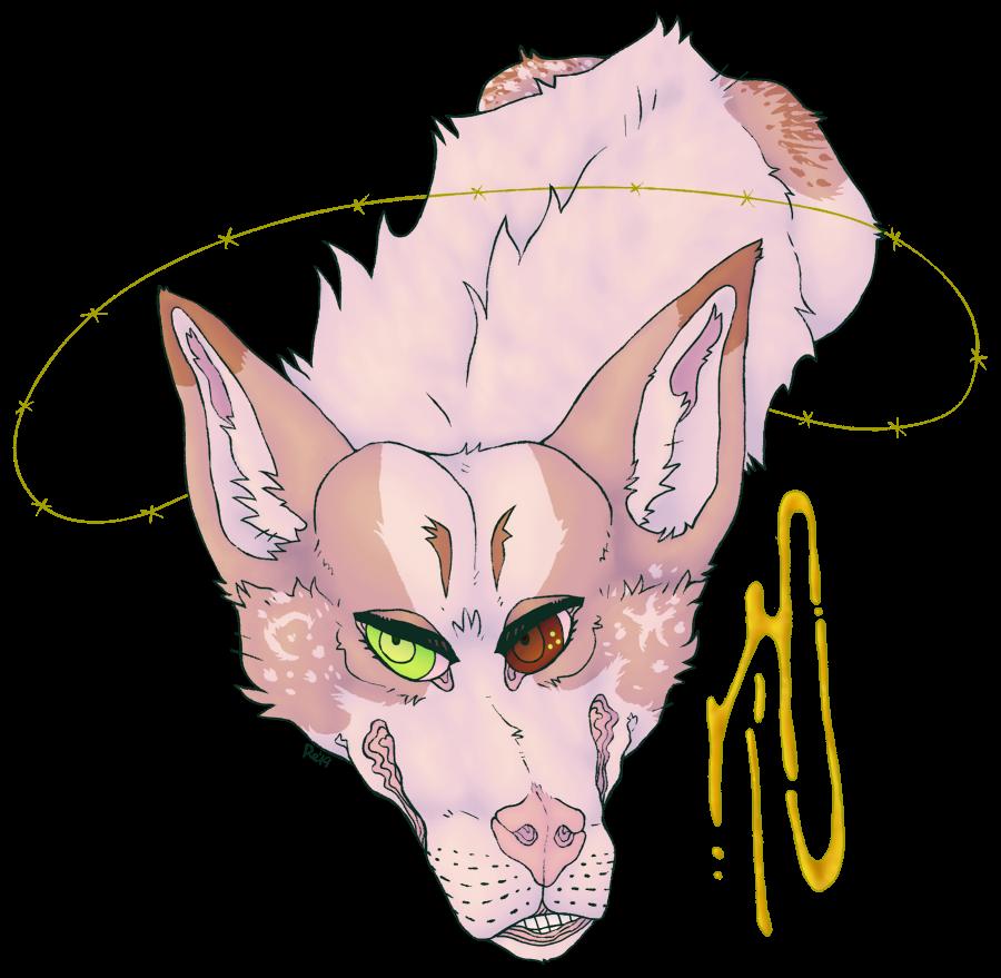 barfs's Profile Picture