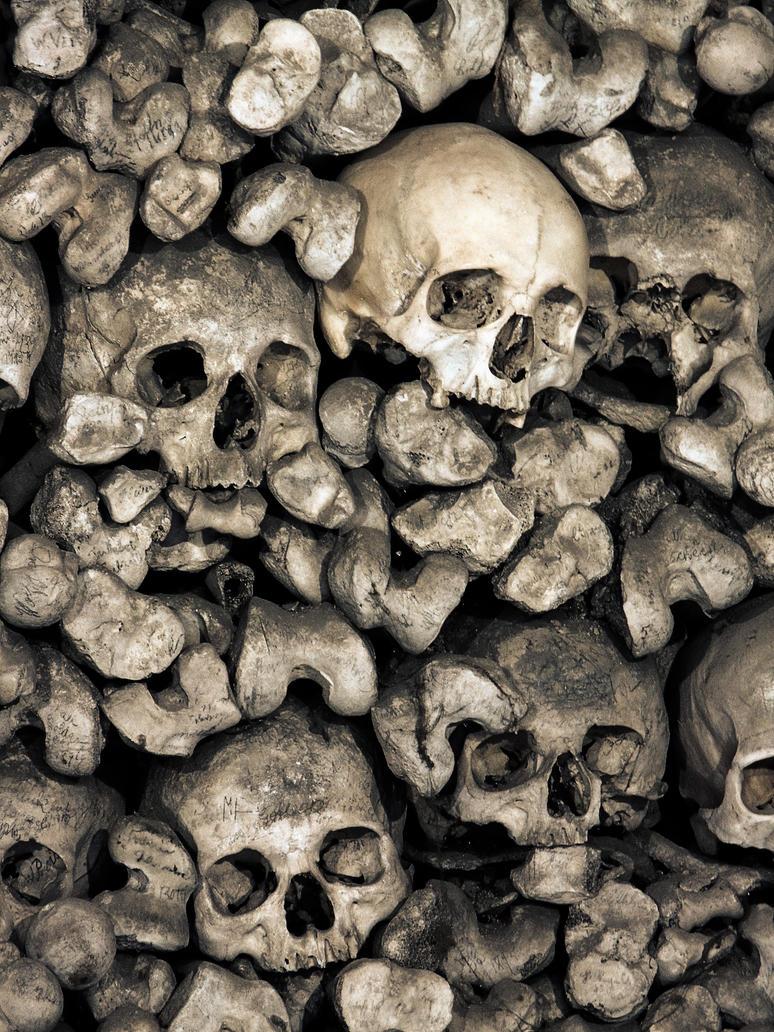 Skulls by fumar-porros
