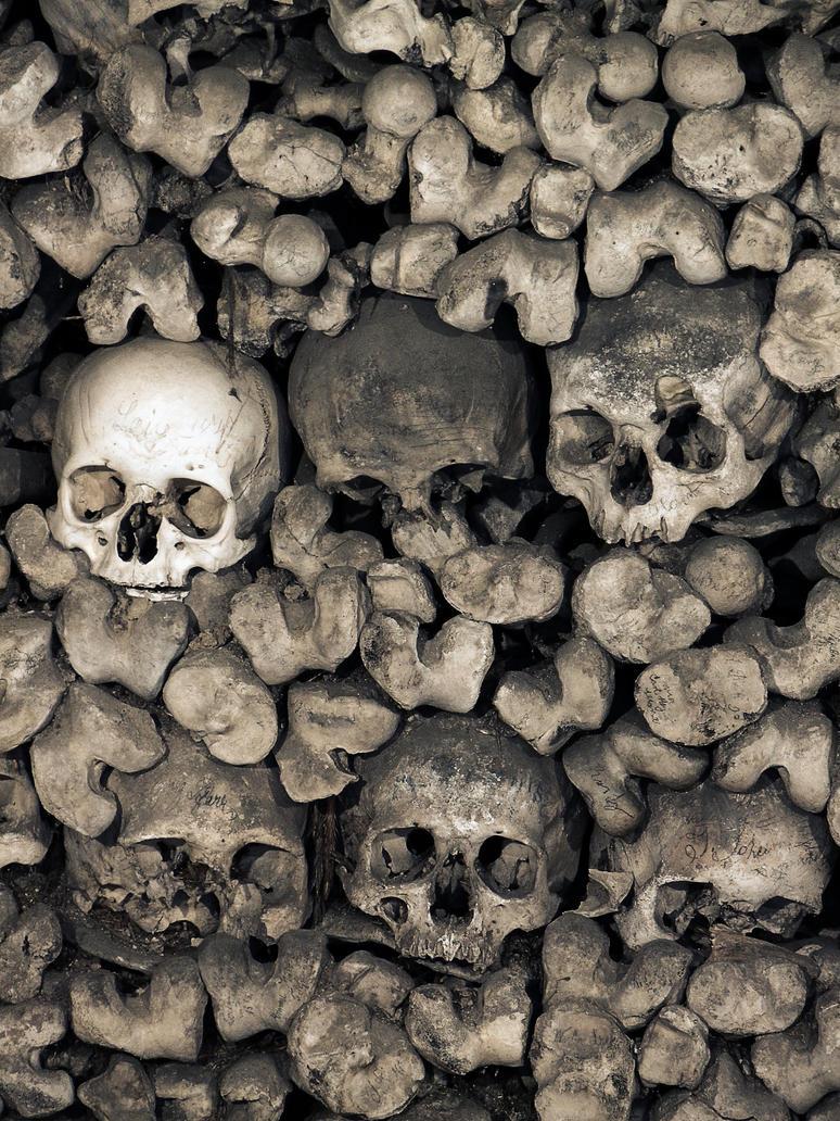 Skulls III by fumar-porros