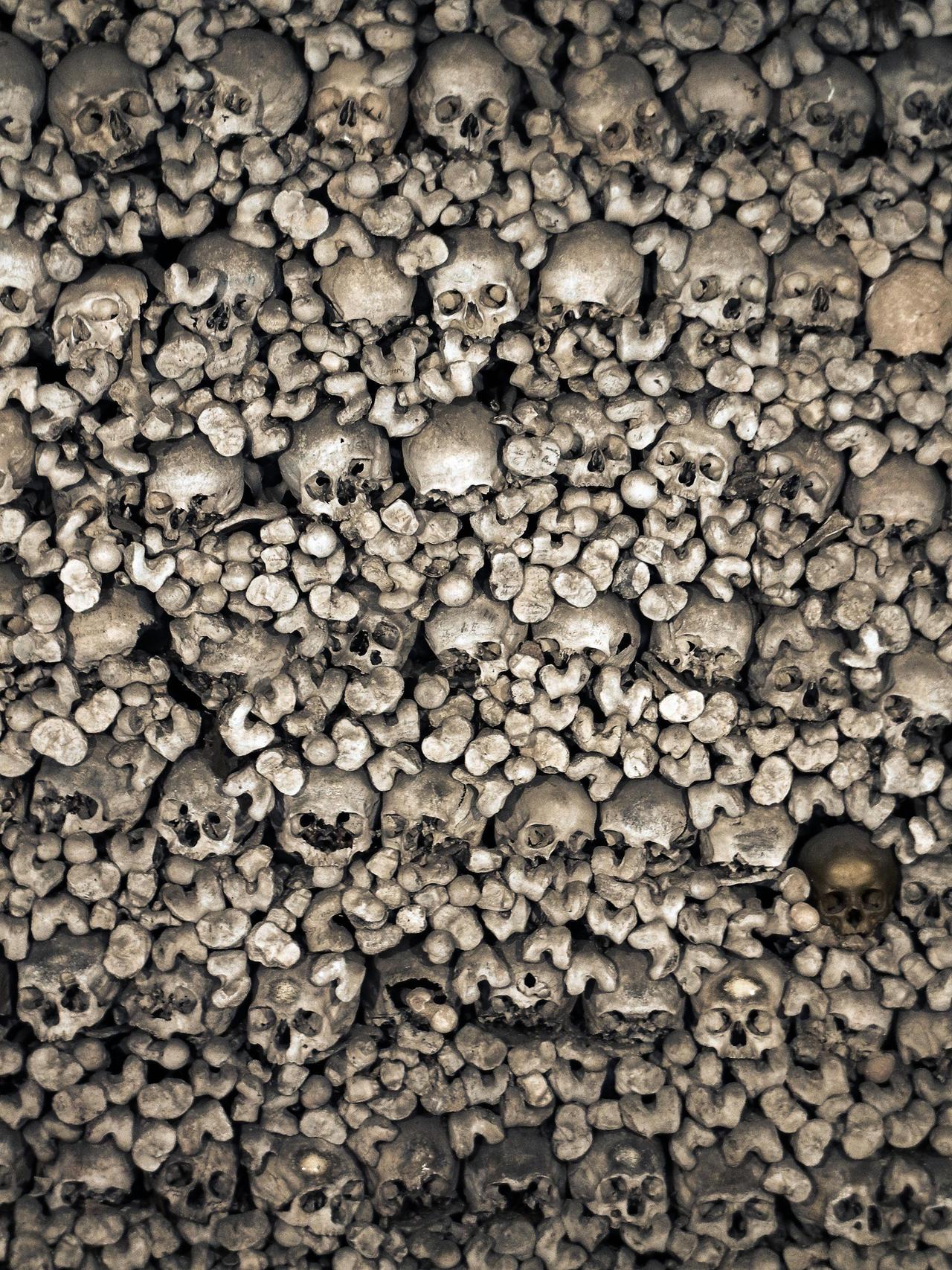 Skulls V by fumar-porros
