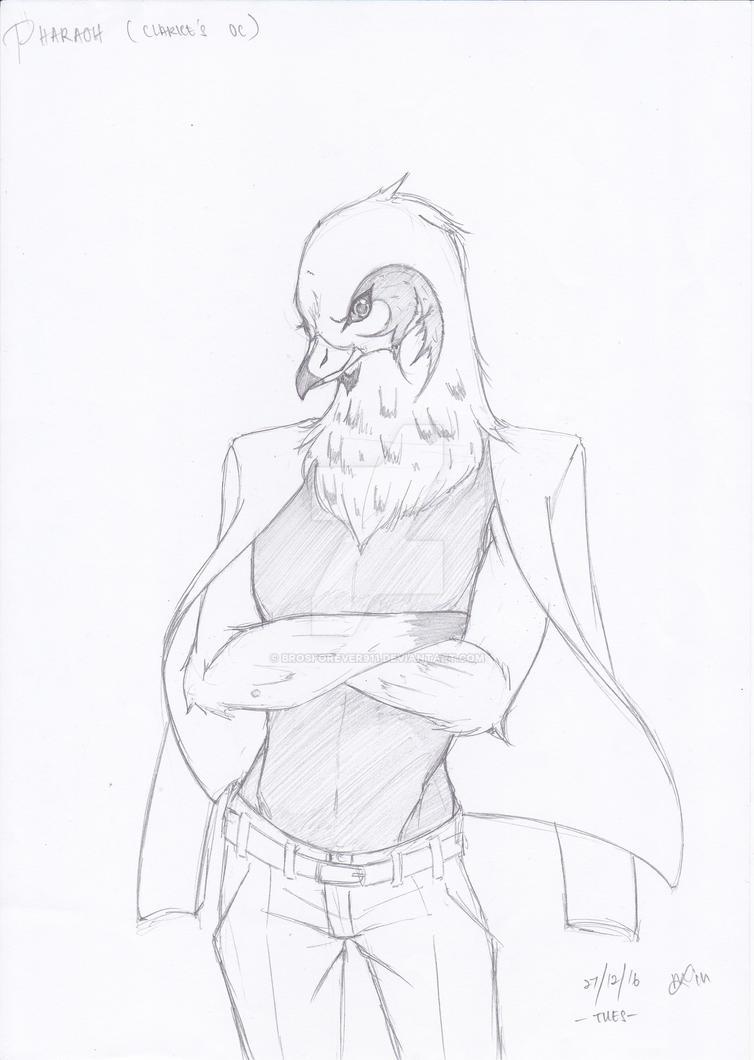 Pharoah the Pedrigine Hawk by brosforever911