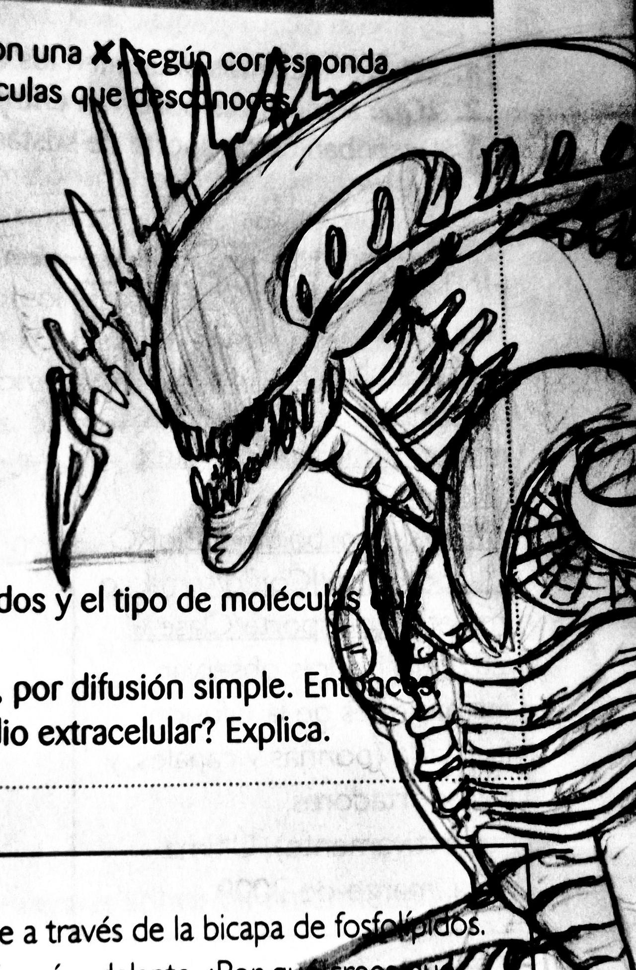 ALIEN sketch in a book by TheWallProducciones