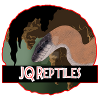 Commission JQ Reptiles Business Logo
