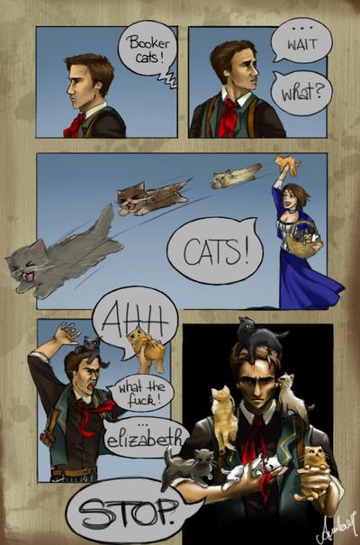 Booker Cats!