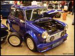 1986 Mini 1000