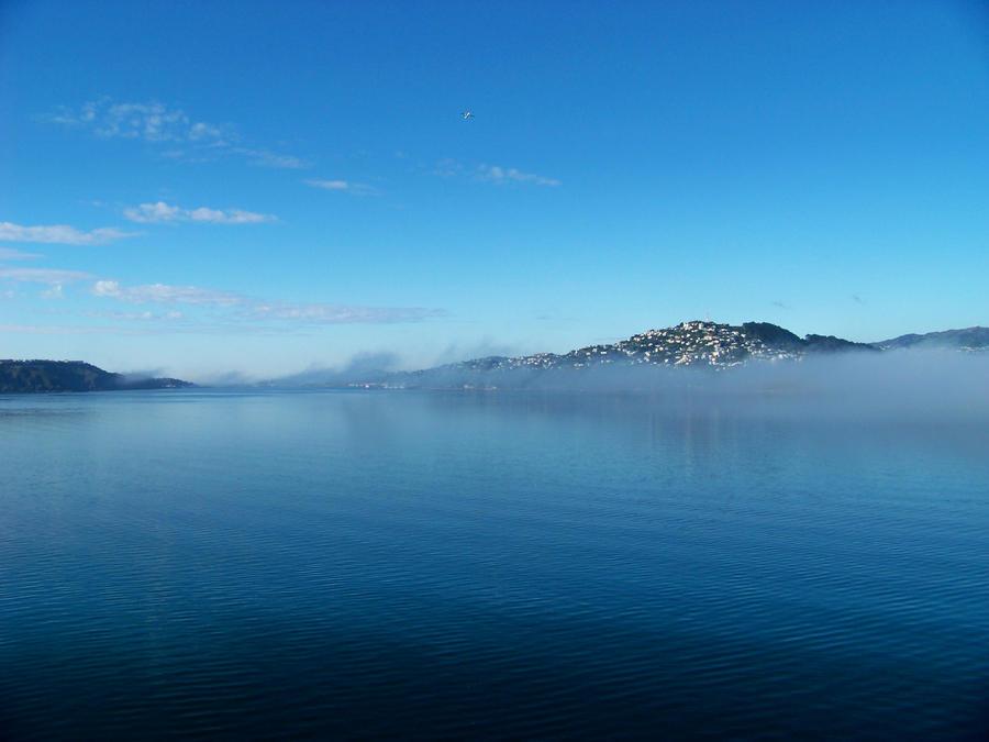 Mist by La-Mort-De-Coeur