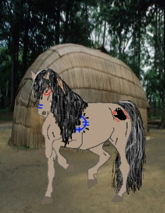 Indian War Horse by Seeker-Saphire