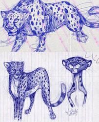 cheetah notebook doodles